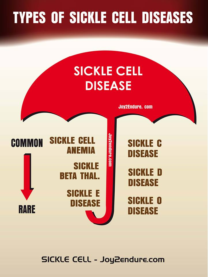 SICKLE CELL AWARENESS: Why It is Important to Know the Different Types of Sickle Cell Diseases.